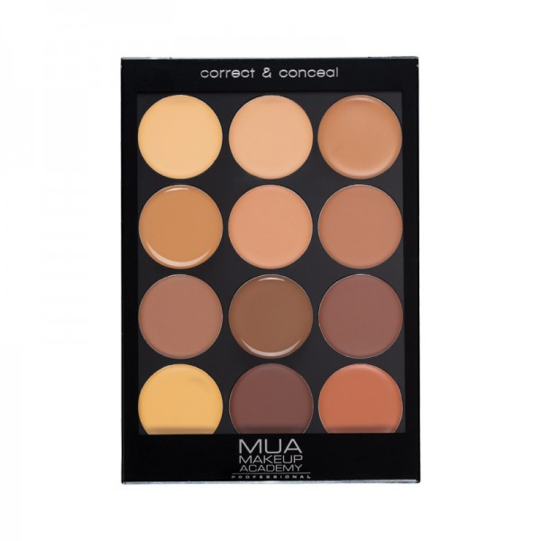 Professional Palette - Correct & Conceal Dark