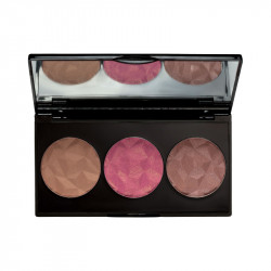 MUA Luxe Bashful Trio Blush 2