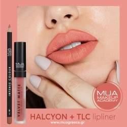 MUA lip combo HALCYON & TLC